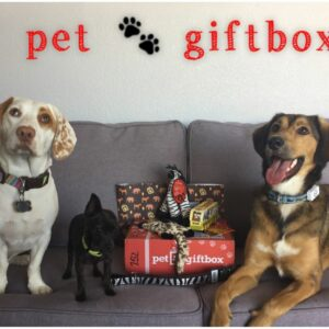 Pet GiftBox 3-Month Subscription